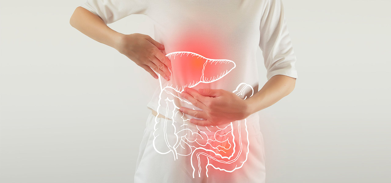 Wie der Darm die Leber beeinflusst